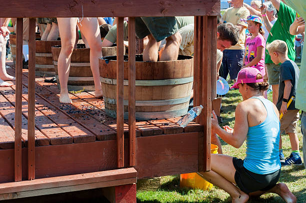Best Grape Stomping Stock Photos, Pictures & Royalty-Free
