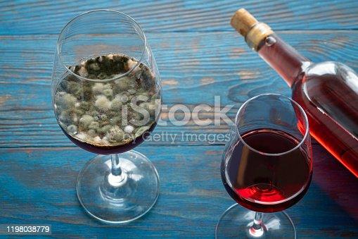 wine glass mold fungus mycelium grow on red wine