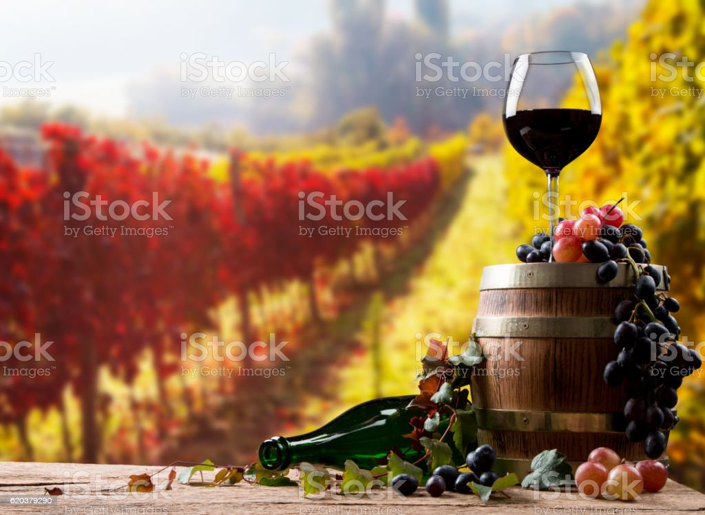 Wine glass foto de stock royalty-free