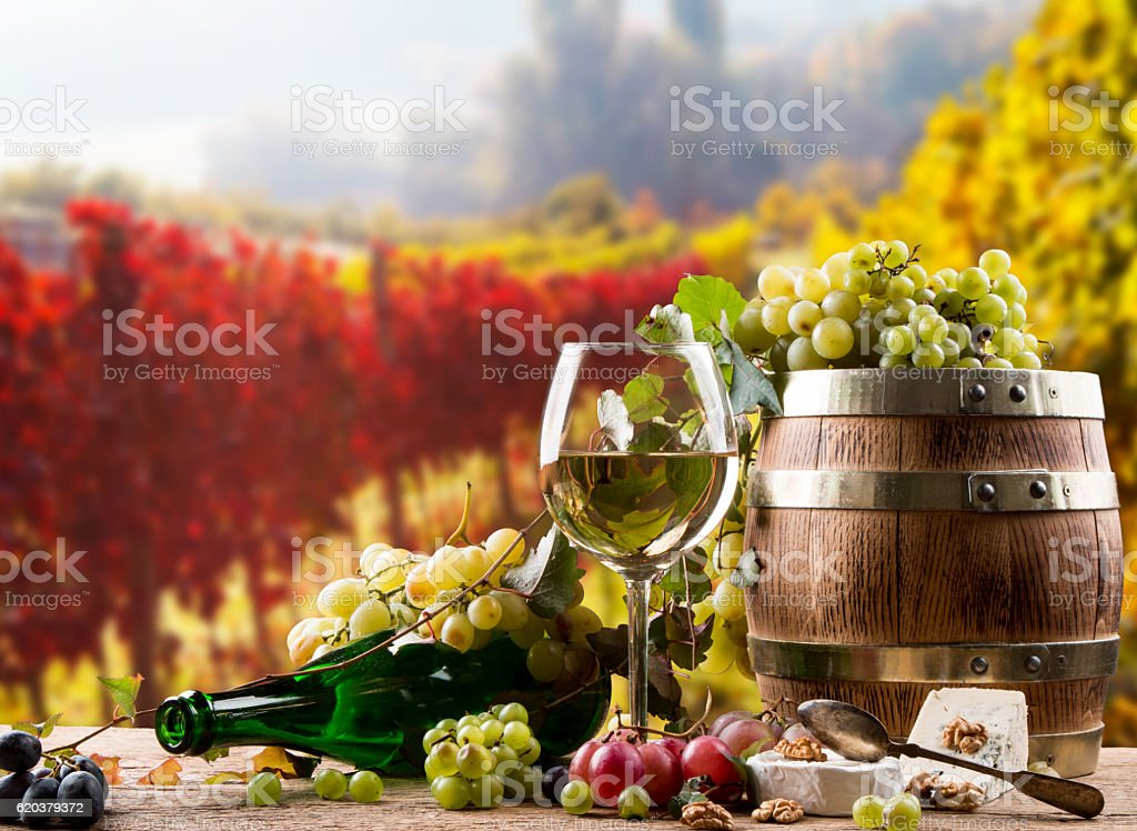Copo de Vinho foto de stock royalty-free