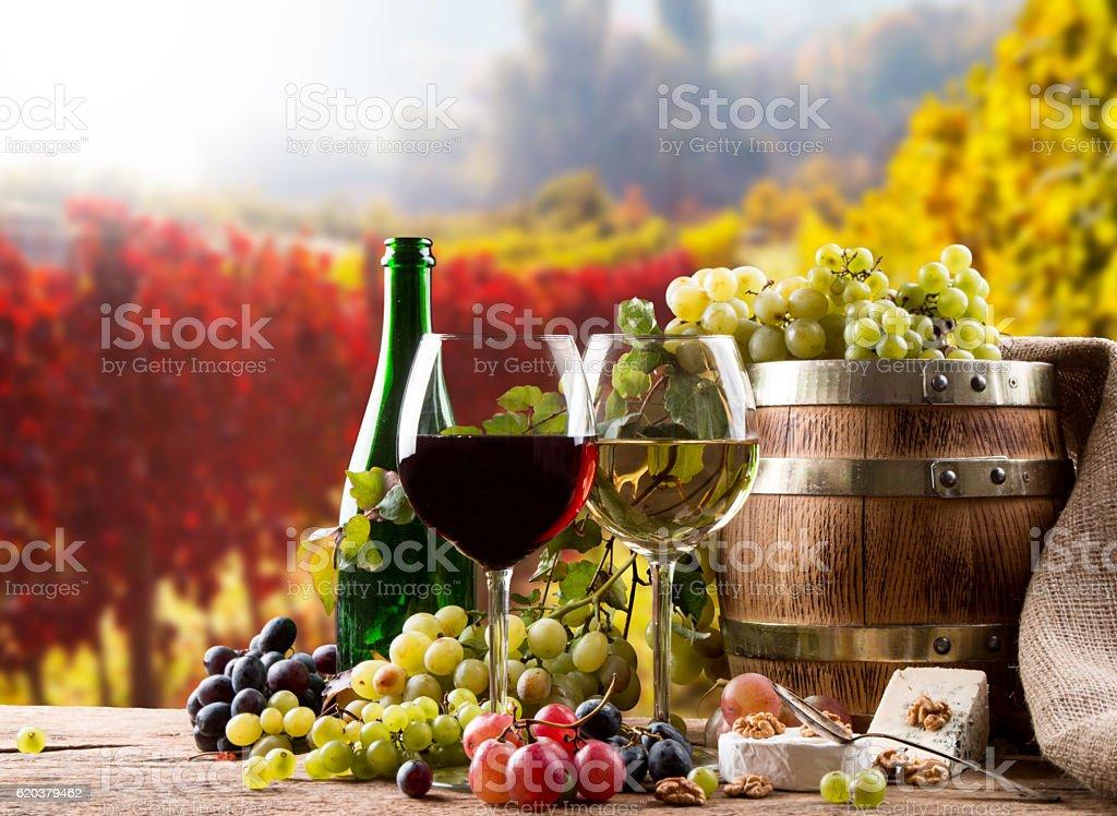 Kieliszek do wina  zbiór zdjęć royalty-free
