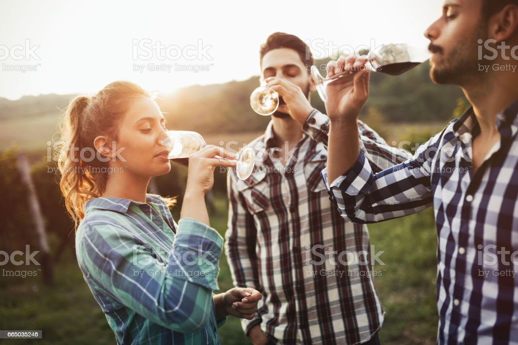Wine grower and people in winery vineyard stock photo