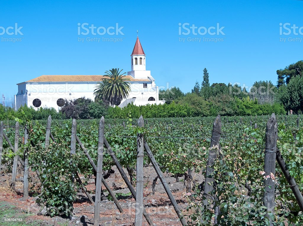 Wine industry in Maipo valley, Chile stock photo