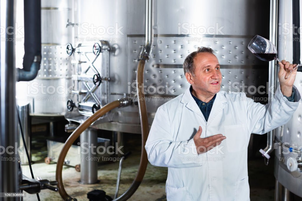 Diligent positive smiling wine maker controls quality of wine at...