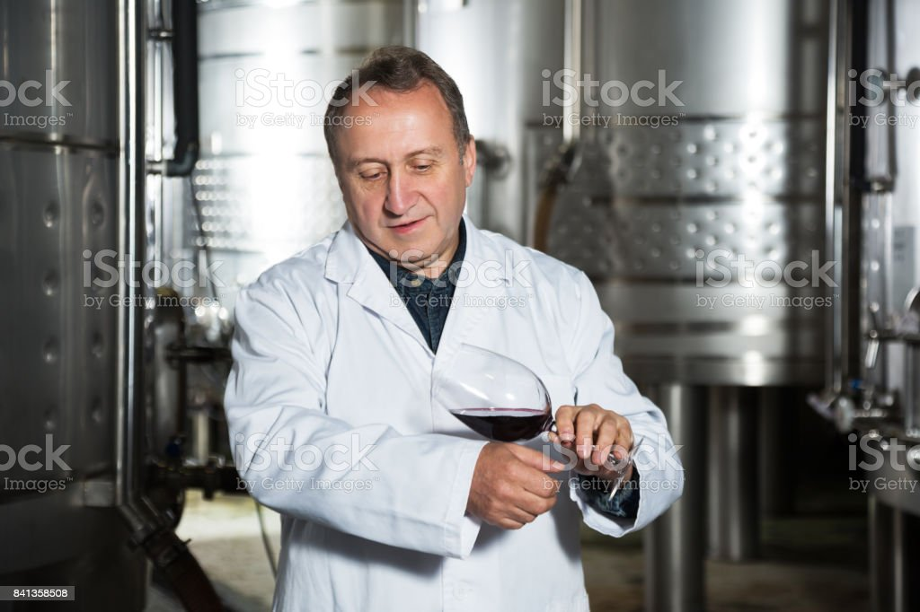 Positive mature wine maker controls quality of wine at winery