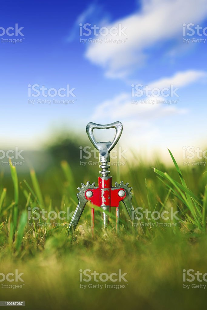 Wine Picnic royalty-free stock photo