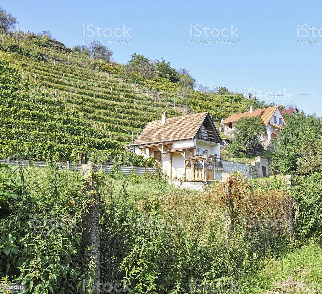 wine press houses stock photo