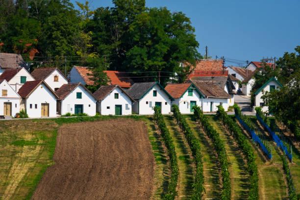Wine Route Austria stock photo