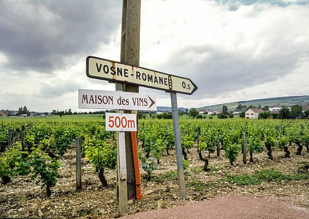 Panneaux Vosne Romanée-vin, France - Photo