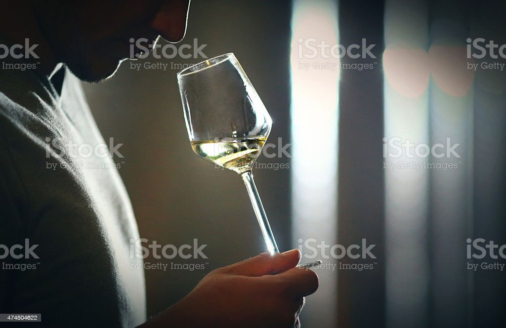 Wine tasting and smelling. stock photo