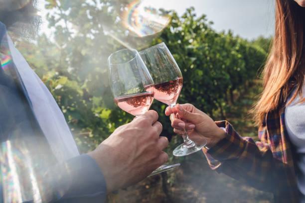 Wine tasting in a vineyard picture id1210658932?b=1&k=6&m=1210658932&s=612x612&w=0&h=fghtyc6cnanoyh3djxxivfx nulrgds7rpyckn4oyqo=