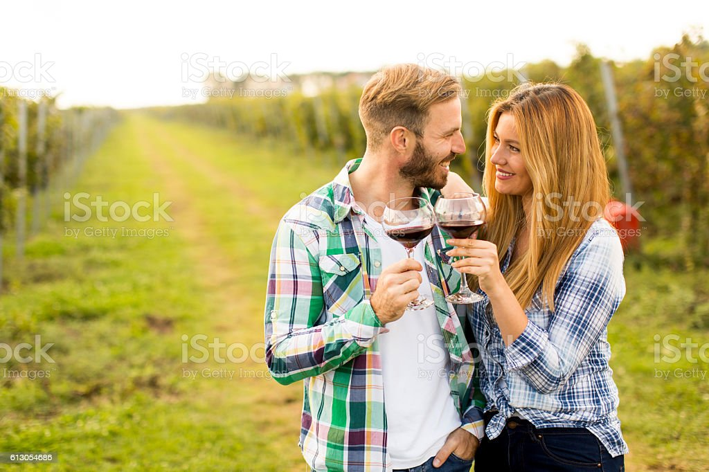 Wine tasting in the vineyard stock photo