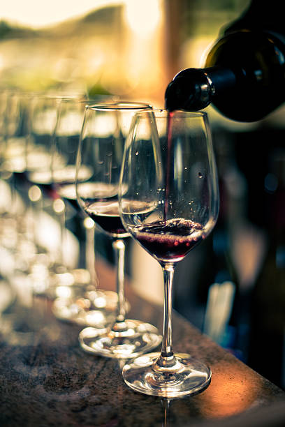 wine tasting - halbergman stock pictures, royalty-free photos & images