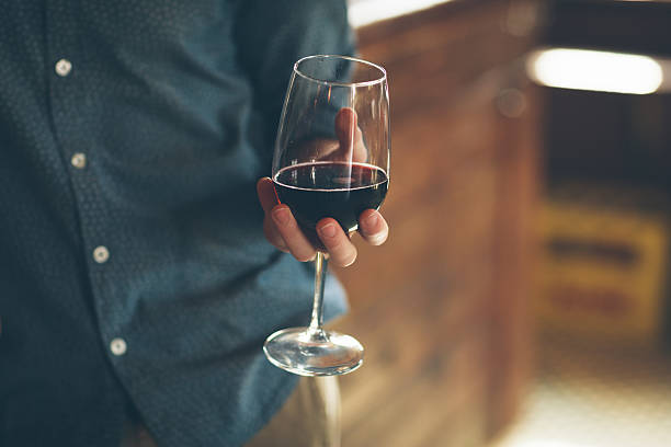 Wine tasting Young man holding a glass with red wine, bar on background merlot grape stock pictures, royalty-free photos & images
