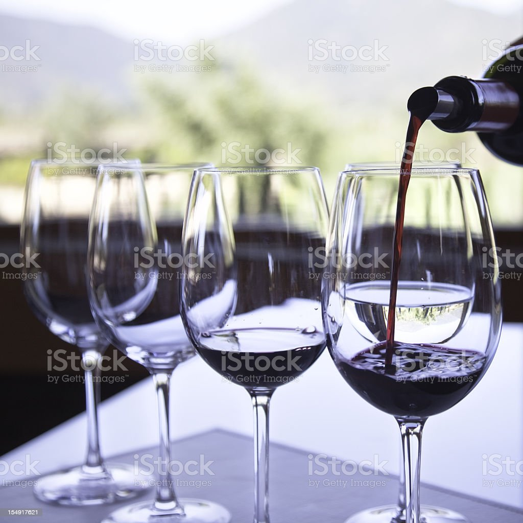 Wine tasting with vineyard in background stock photo