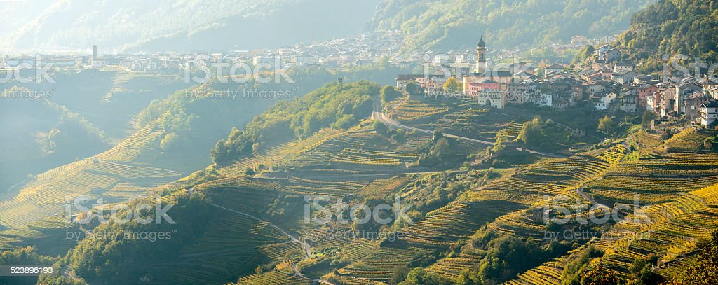 Wine terraces below the towns of Faver and Cembra (Trentino). stock photo