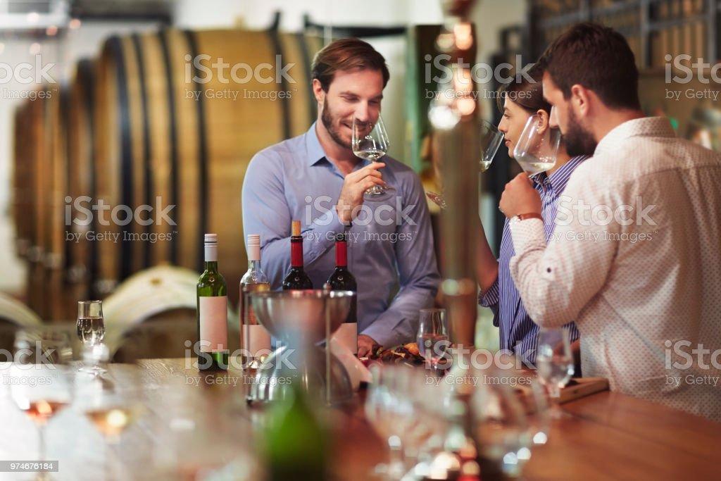 Wine tourism and degustation stock photo