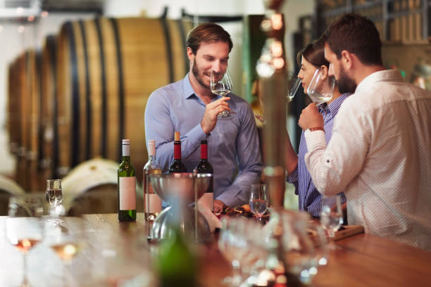 wine tourism and degustation - tourism stock pictures, royalty-free photos & images