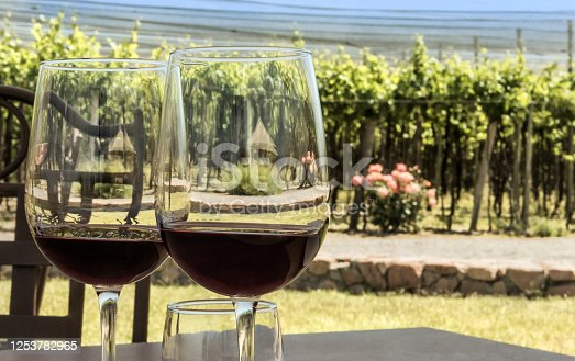 Tasting red wine, in front of beautiful vineyards.