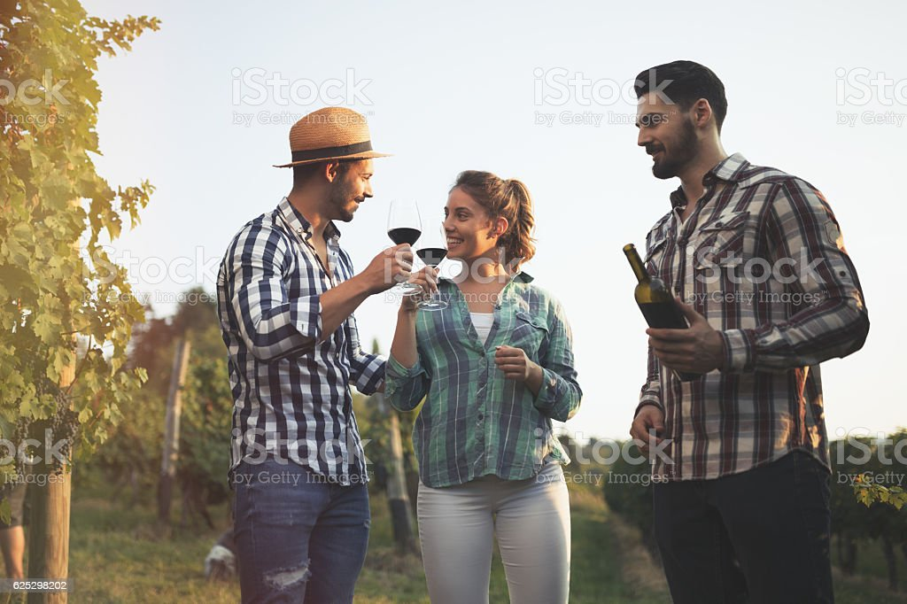 Wine tourists tasting wine in vineyard stock photo