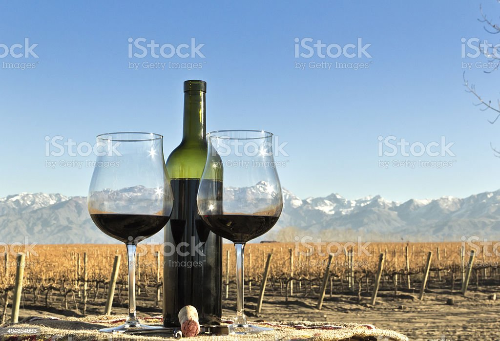 Wine, vineyard and mountain royalty-free stock photo