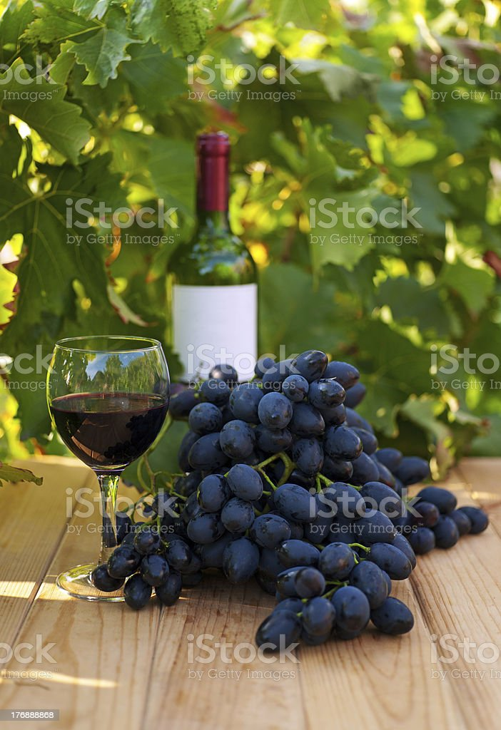 Wine with grape royalty-free stock photo