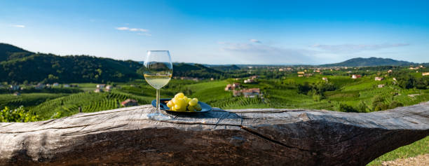 Wineglass With Grapes on a Wood Table, Italian Wine, Glass of White Wine stock photo