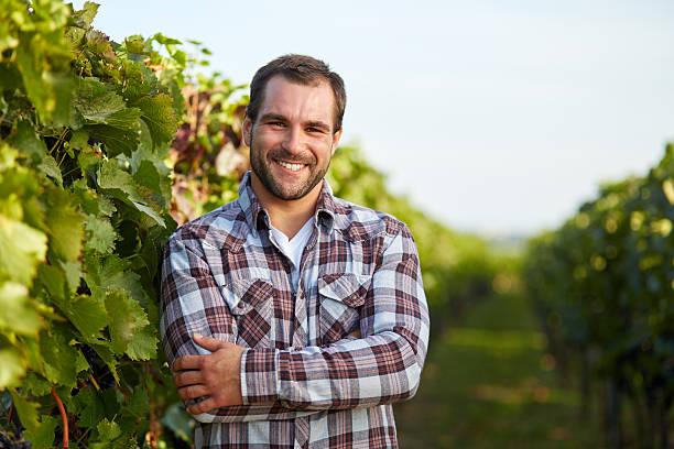 winemaker im vineyard - bauernberuf stock-fotos und bilder