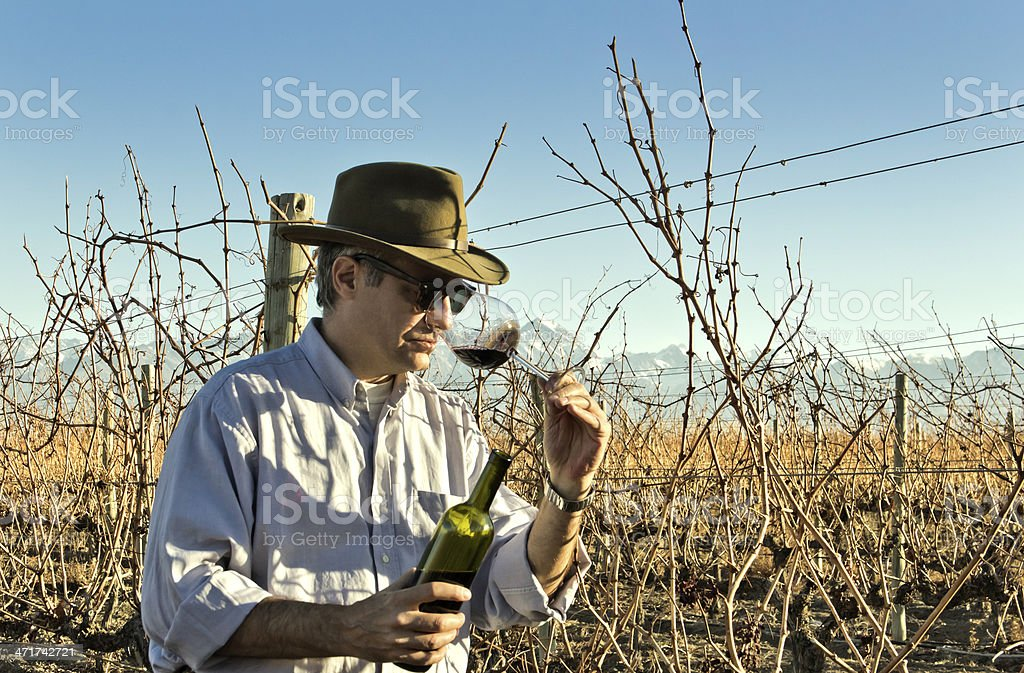 Winemaker smelling wine royalty-free stock photo