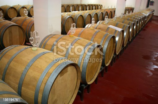 Winery oak barrels in wine basement with wine in aging process