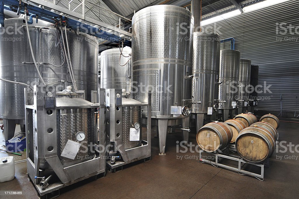 Winery stock photo