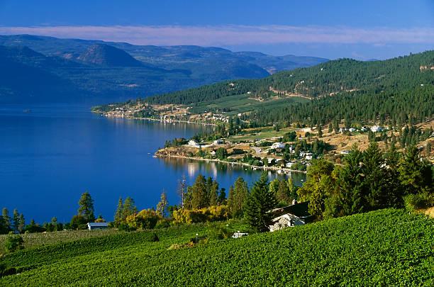 Weingut ländlichen malerischen lake – Foto