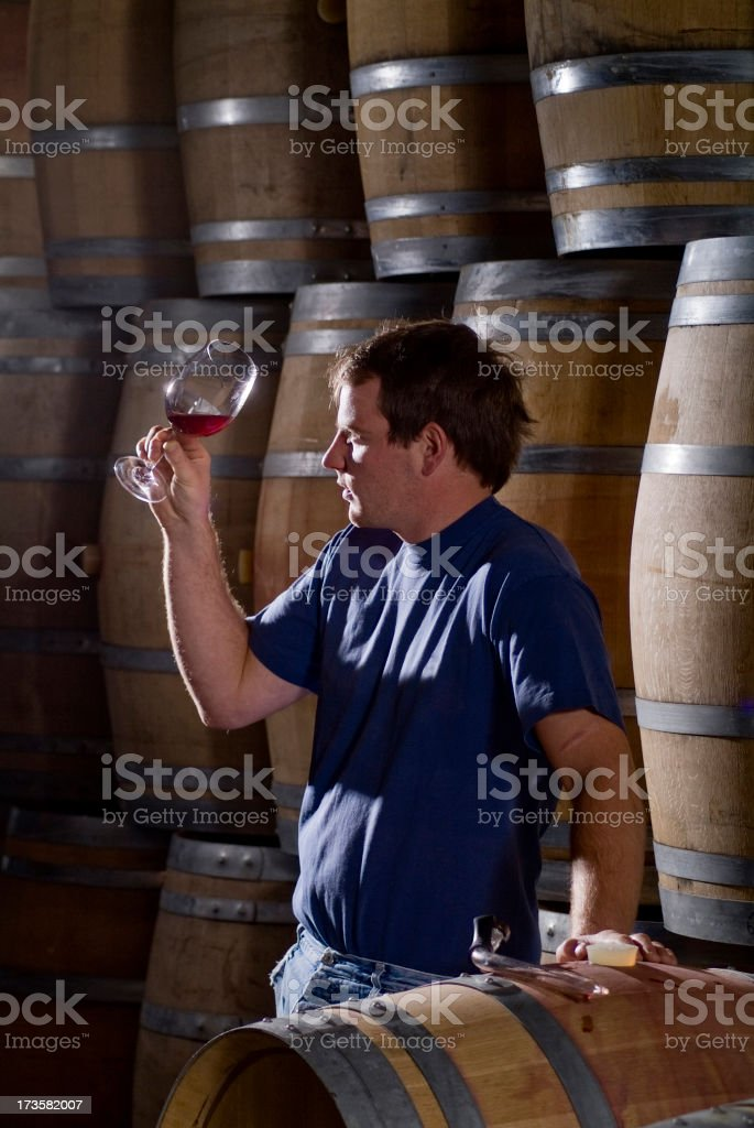 Weingut Series royalty-free stock photo