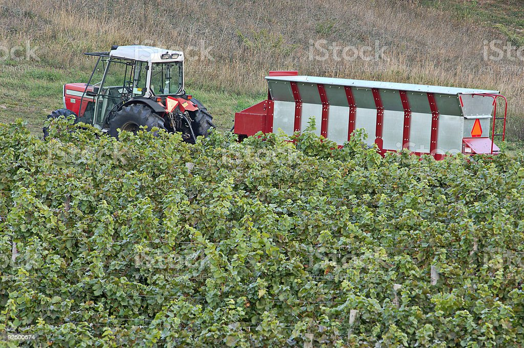 Winery-Tractor-Hopper-Vineyard royalty-free stock photo