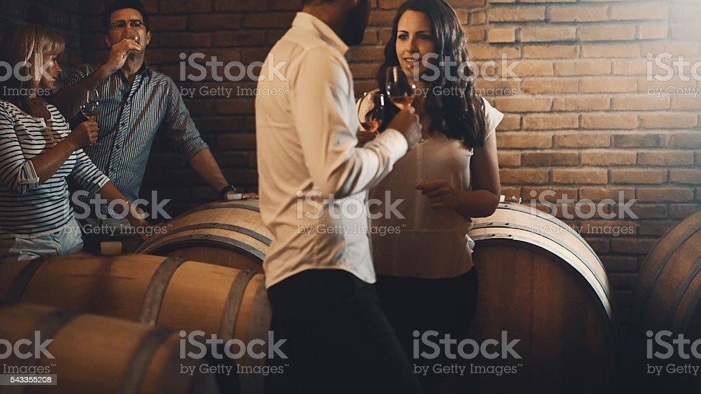 Winetasting in a wine cellar. stock photo