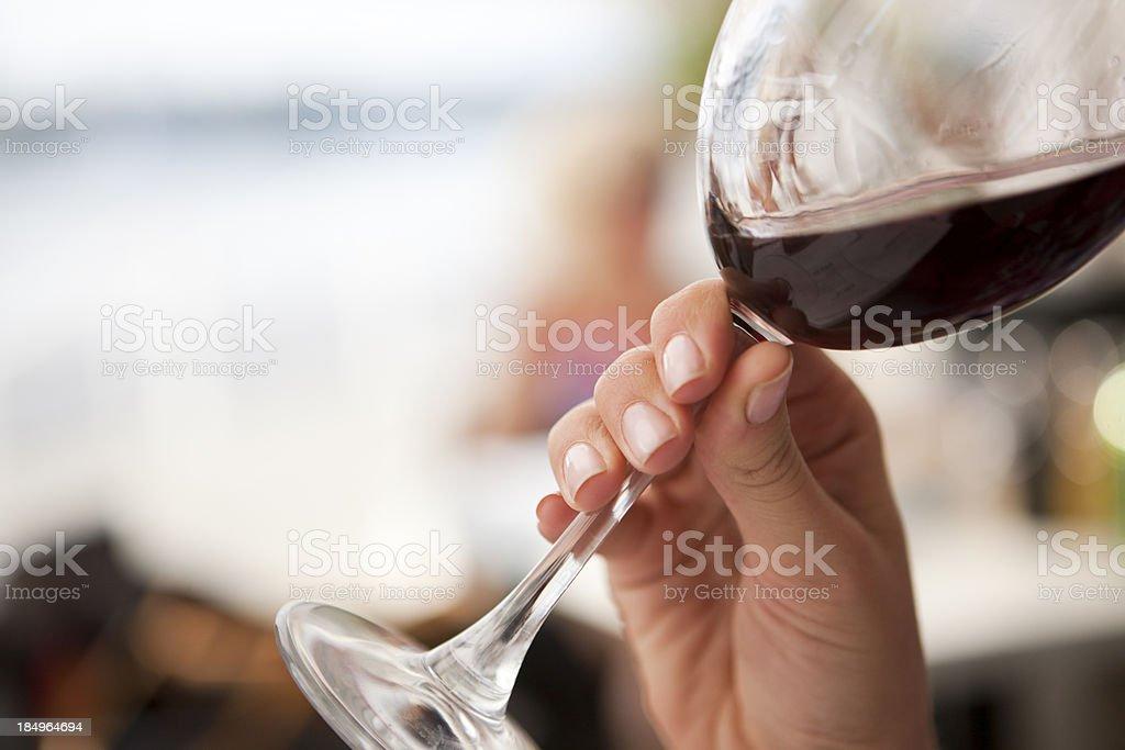 Winetasting royalty-free stock photo