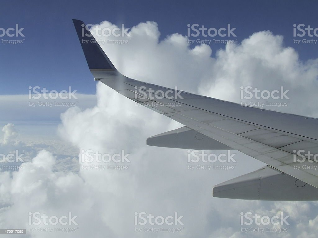 Wing royalty-free stock photo