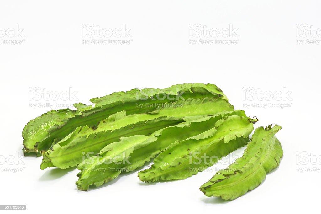 Winged Bean Goa bean stock photo