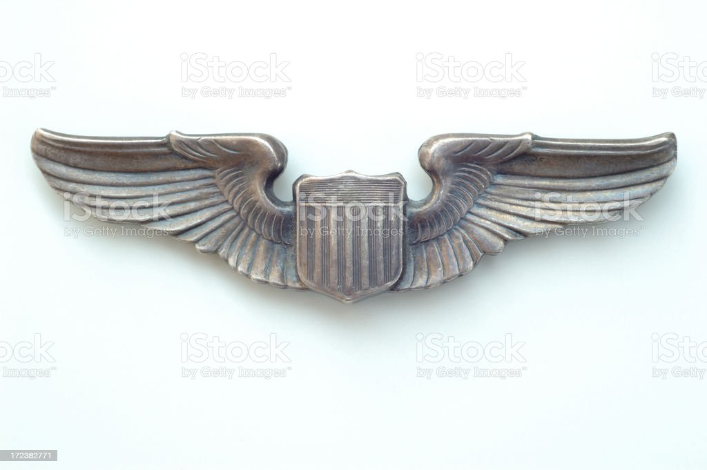 Winged Insignia stock photo