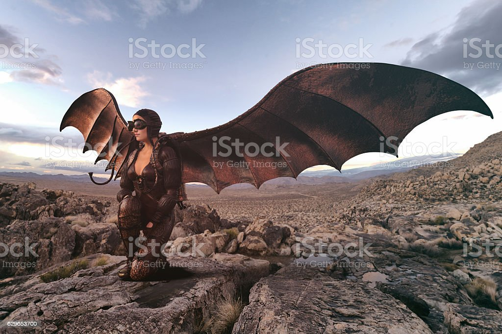 wings of aviator stock photo
