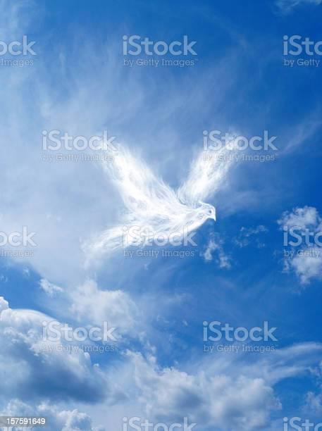 Wings of freedom picture id157591649?b=1&k=6&m=157591649&s=612x612&h=xa9842xvymmitpxzujmmmctkddlaqxby jj5d51tqeq=