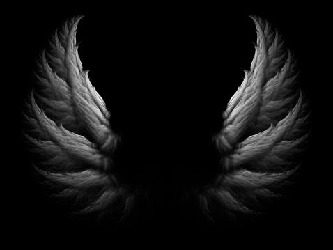 White angel wings on black background.