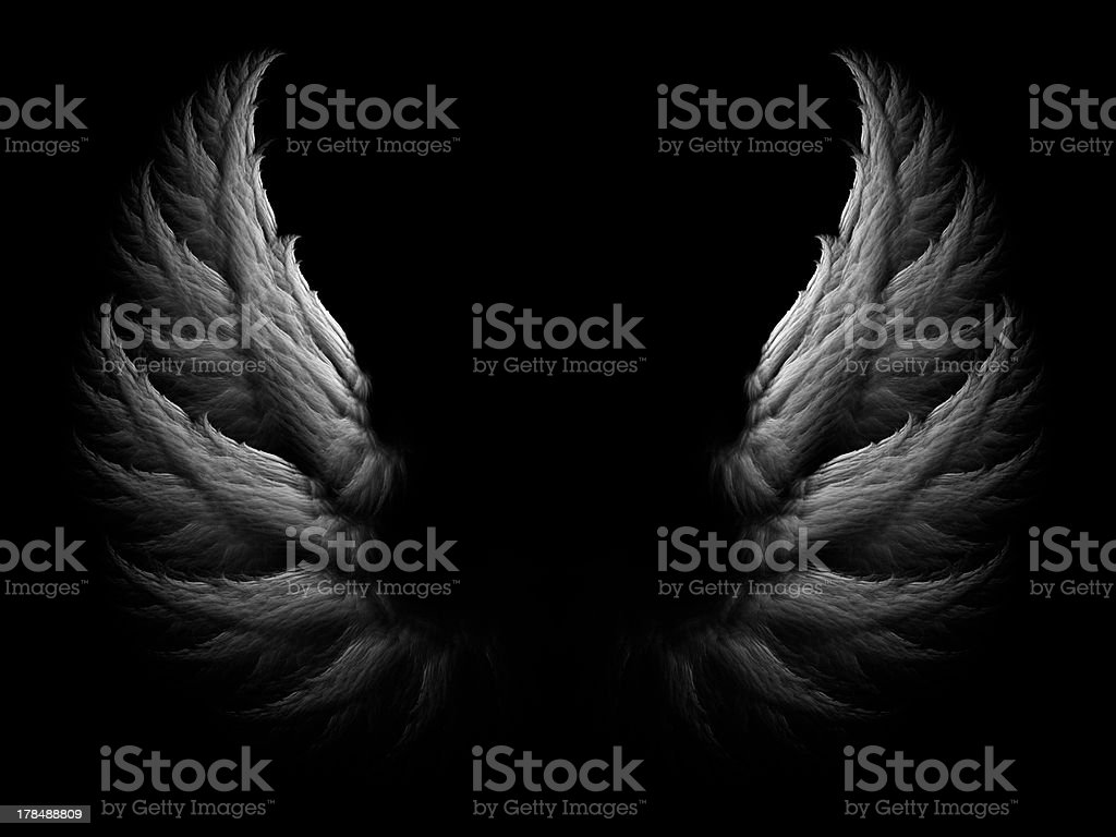 Wings stock photo