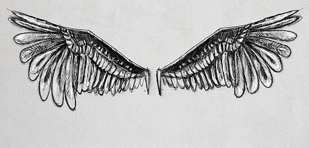 wings sketch - engel zeichnen stock-fotos und bilder