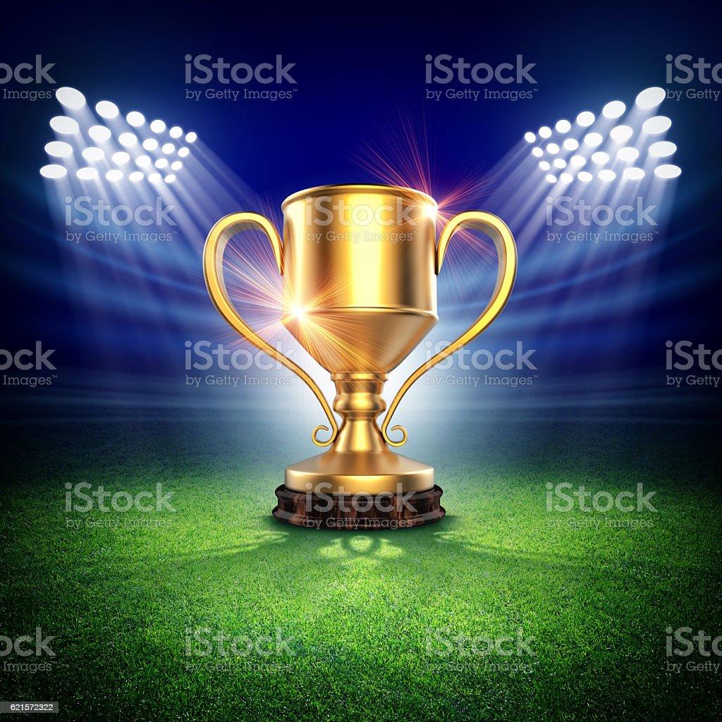 Winner cup in stadium photo libre de droits