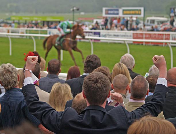 winner - horse racing 뉴스 사진 이미지