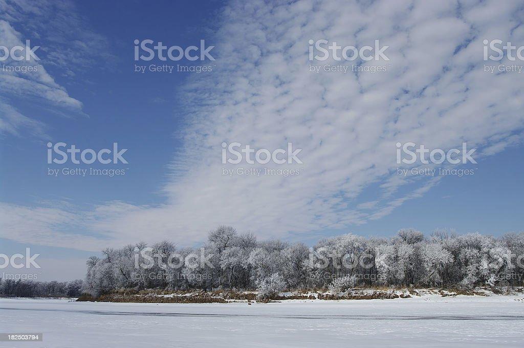 Winnipeg Hoarfrost stock photo