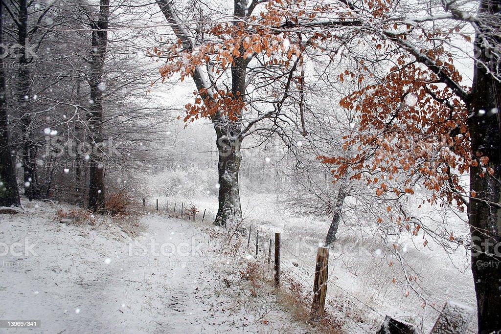 winter 04 royalty-free stock photo