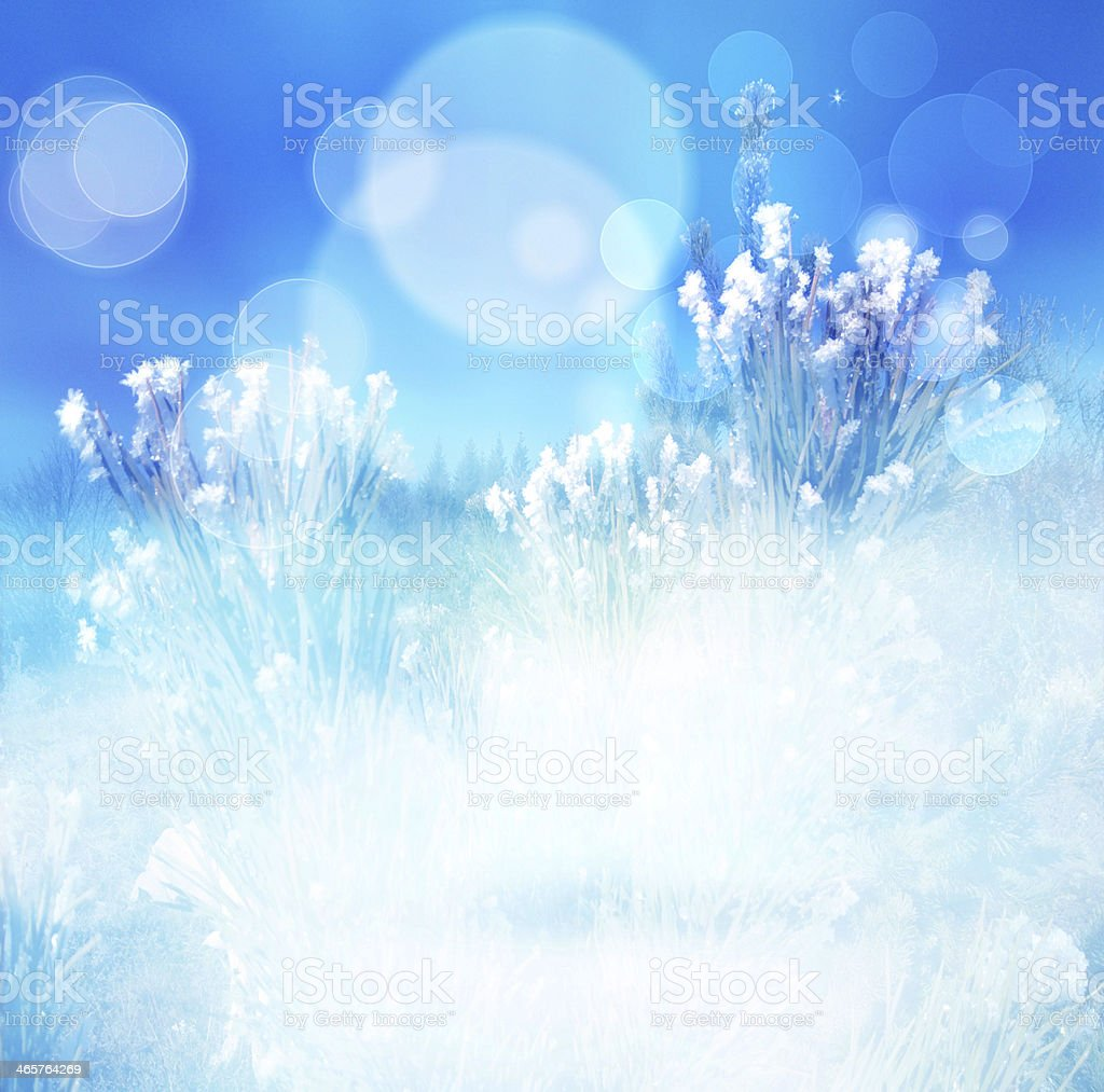 Winter abstract blur background, natural blue wintertime stock photo