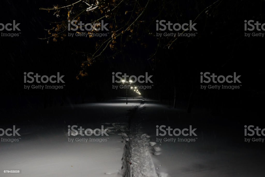 Winter alley in park and shining lanterns. Night shot. stock photo